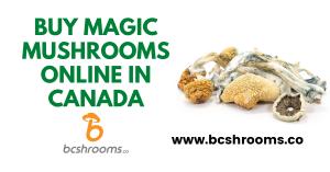 Buy magic mushrooms online in Canada