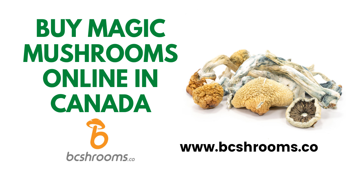 Buy magic mushrooms online in Canada